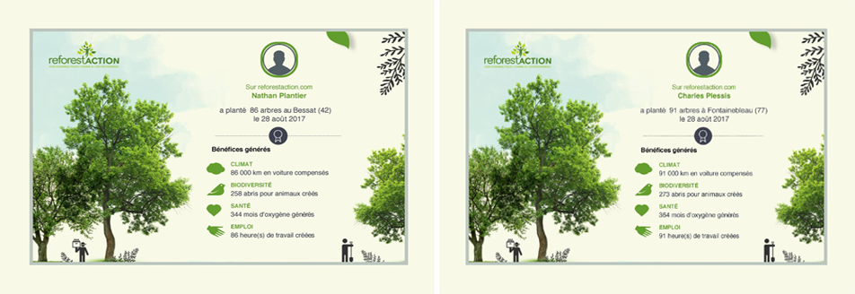 diplomes-ecoresponsable-reforestaction